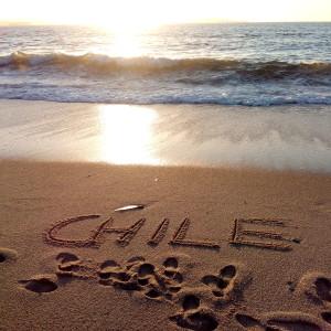 Andrea MonteroExperiencia en ChilePunta de Parra