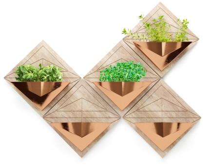 Plegos con plantas