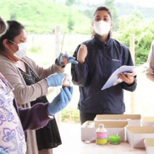 Facultad de Ingeniería impulsará la innovación social en la Región del Maule